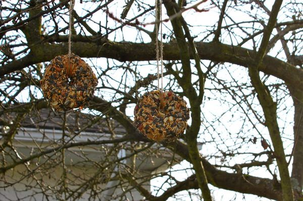 Idea del Día de la Tierra Idea Tin Can Bird Feeder - Turning the Cloc Back