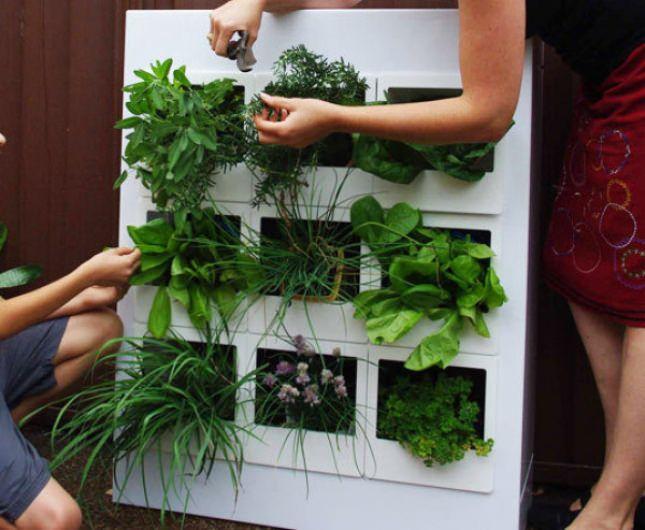 50 Easy and Pretty DIY Indoor Herb Garden Ideas Page 3