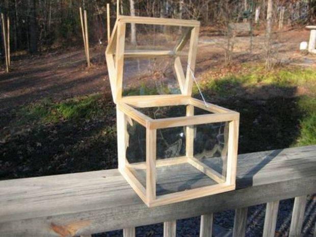 Countertop Greenhouse