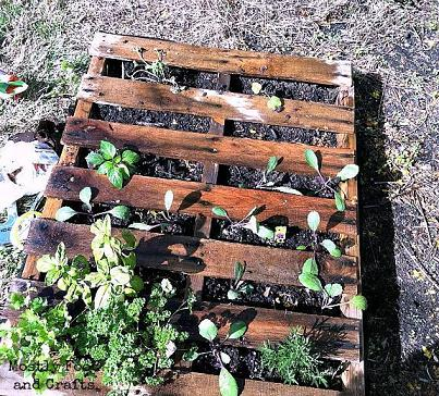 50 creative ways to reuse wooden pallets page 7 - Reusing pallets in the garden ...