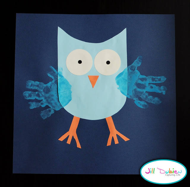 meet the dubiens owl pictures