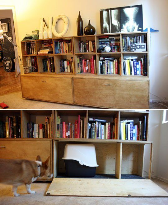 Litter Boxes Hidden Inside Bookcase