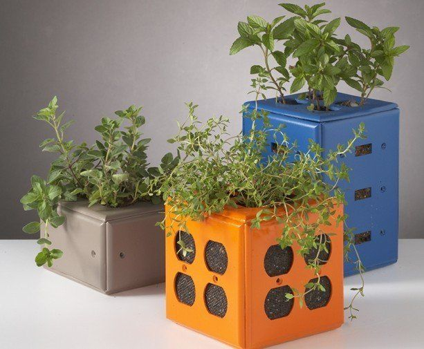 Turn Old Switch Plate Covers Into Desktop Planters