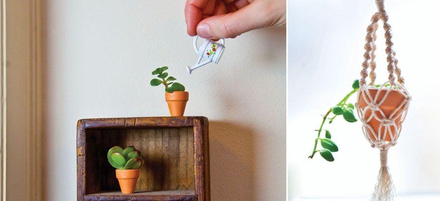 Micro Planters