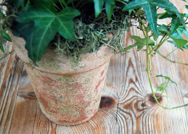 Textured Aged Pots