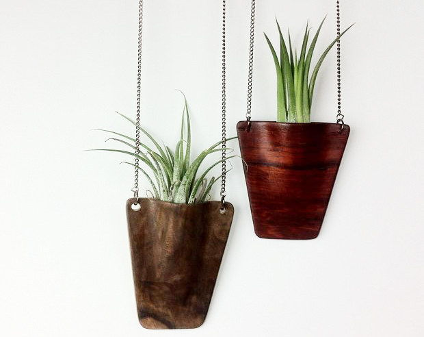 50 elegant diy ways to show off your plants page 6 - Elegant ways to display air plants in your home ...