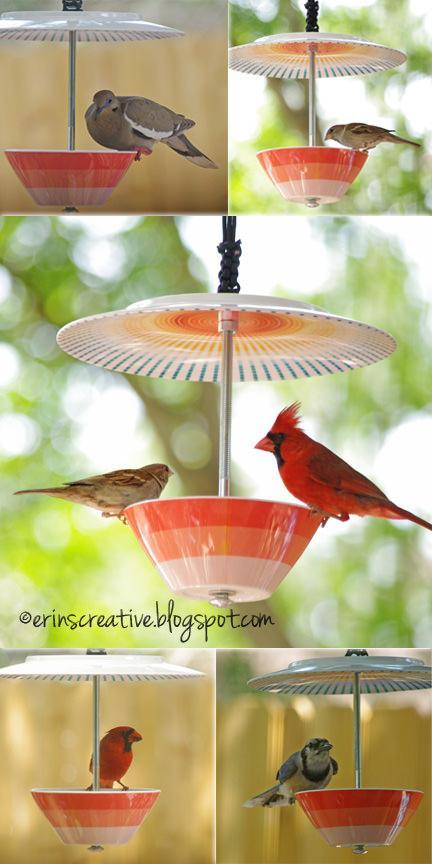 Plate and Bowl Bird Feeder
