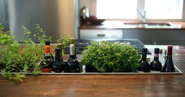 50 Easy and Pretty DIY Indoor Herb Garden Ideas – ListInspired.com