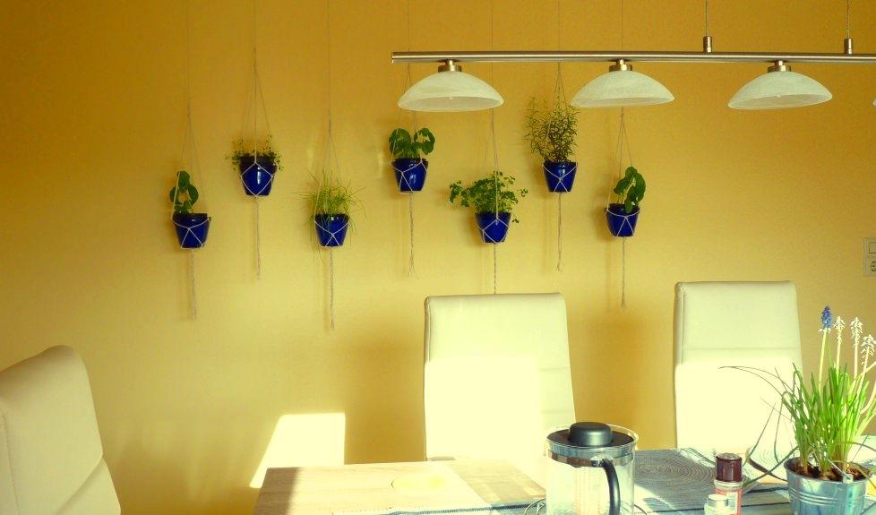 Indoor Hanging Garden Ideas indoor hanging garden ideas 14 Hanging Planters