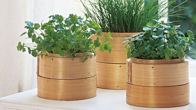Indoor Herb Garden Ideas vertical herb garden ideas 22 7 Bamboo Steamer Garden