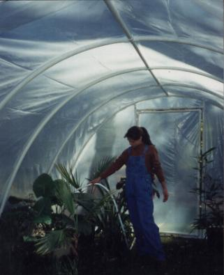 35 Great and Cheap DIY Greenhouse Projects Ideas ... on victorian ranch house plans, pvc projects, rooster house plans, pvc light box, wood frame house plans, energy efficient house plans, cheap house plans, pvc gardening, straw bale house plans, pvc house, poultry house plans, french country house plans, allison ramsey architects house plans, old chicken house plans, pvc parts list, unique modern contemporary house plans, small timber frame house plans, earth covered hobbit home plans, cold weather dog house plans,