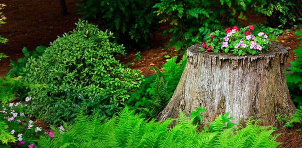 How To Make A Tree Stump Planter