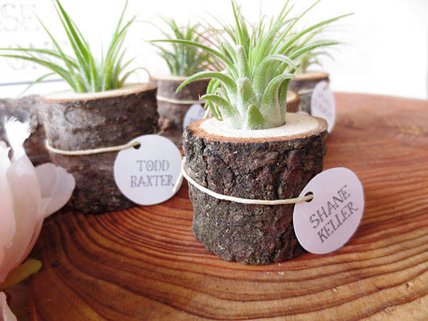 Small Stump Planter