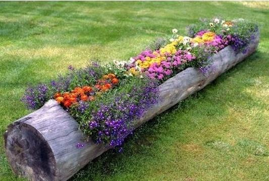 Log Flower Planter