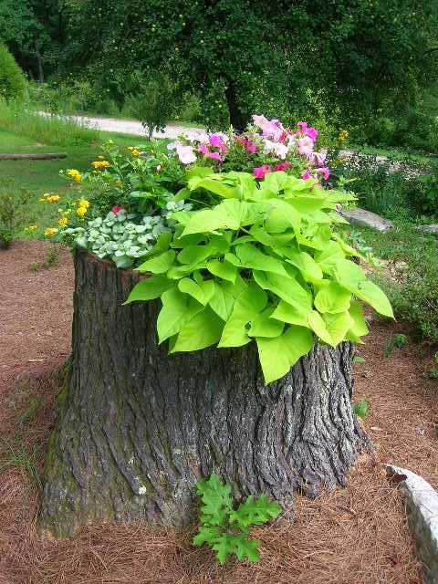 Create a Tree-Stump Planter