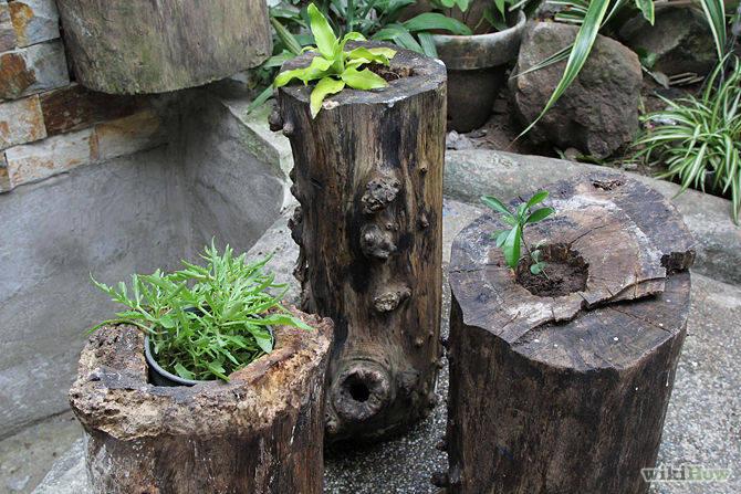 Tree Stump Planters DIY
