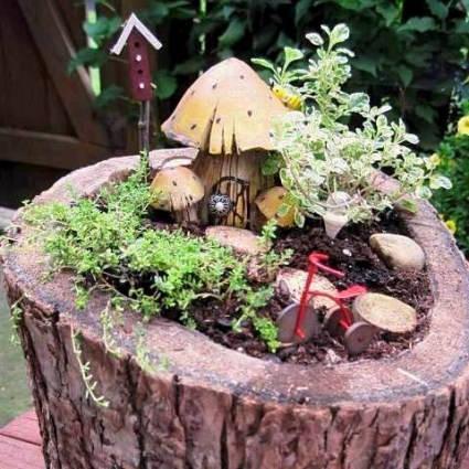 Woodsy Fairy Garden
