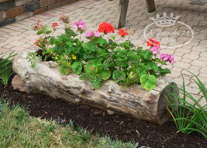 Log Planter for Flowers