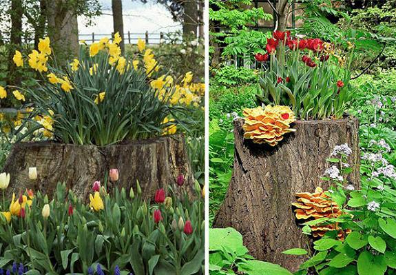 Tree Stumps for Yard Decorations