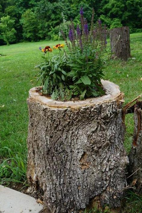 A Clever Kind of Planter
