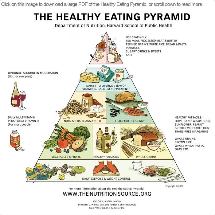 Diagram Of Healthy Food Pyramid The Healthy Eating Pyramid Design