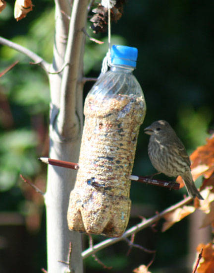 50 creative ways to reuse old plastic bottles page 7 for Plastic bird feeders