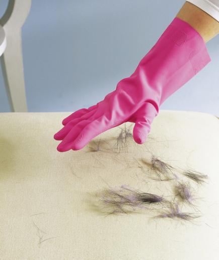 Use Rubber Glove as Pet Hair Remover