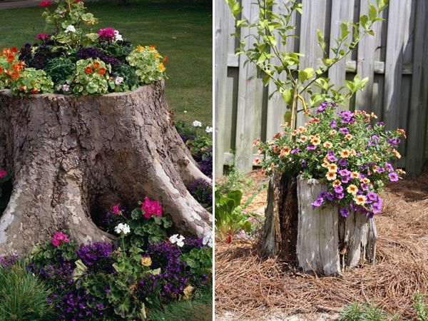 Turning Old Tree Stumps Into Garden Decorations