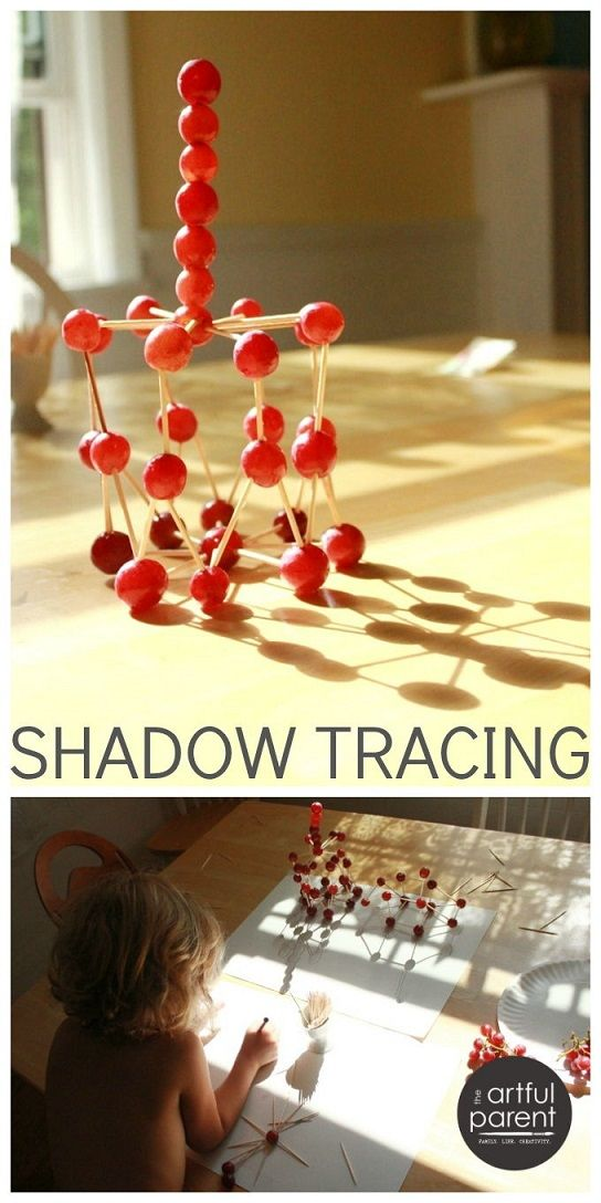 Shadow Tracing with Grape Sculptures