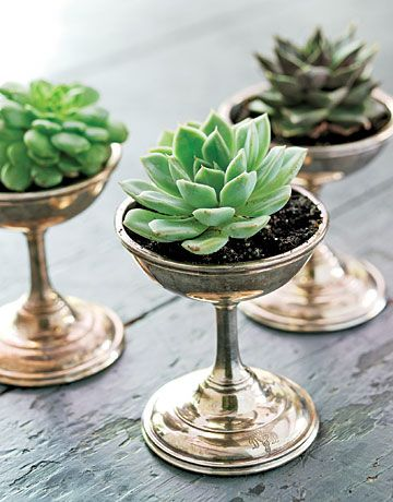 Ice Cream Dishes Planters
