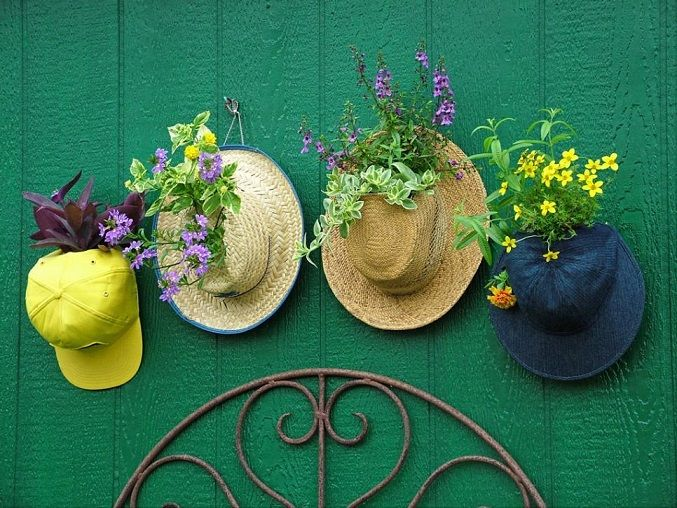 Old Hats Hanging Garden