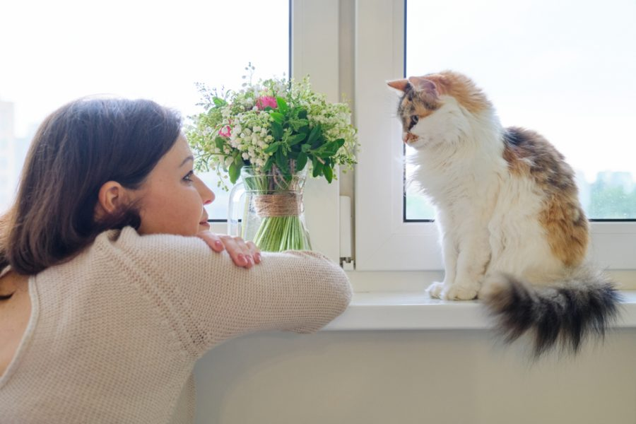 If Animals Could Talk: What Is An Animal & Pet Psychic?